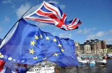 Vấn đề Brexit: Đàm phán giữa Anh và EU đạt một số tiến triển