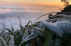 Bắc Bộ đón không khí lạnh tăng cường, vùng núi khả năng có băng giá