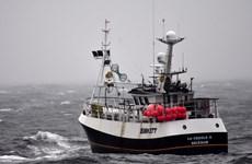 Bloomberg: EU từ chối nhượng bộ của Anh về vấn đề đánh bắt cá