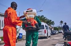 Dịch COVID-19: Châu Phi tăng cường các biện pháp đề phòng