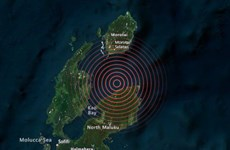 Lại xảy ra động đất ở Indonesia, không có cảnh báo sóng thần