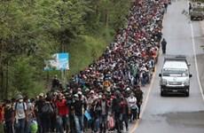 Guatemala chặn hàng nghìn người di cư Honduras tìm cách đến Mỹ