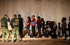 Mỹ: Chính quyền mới sẽ ngừng trục xuất người nhập cư trong 100 ngày