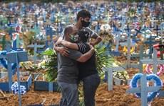 Brazil: 5 ngày liên tiếp ghi nhận hơn 1.000 ca tử vong vì COVID-19