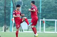Đội hình tuyển Việt Nam đấu Malaysia: Công Phượng, Văn Hậu đá chính