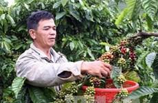 Dư nợ cho vay nông nghiệp nông thôn tăng 14,3%