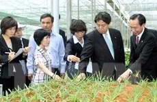 Thêm 2.370 tỷ đồng cho vay thí điểm nông nghiệp công nghệ cao