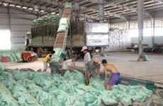 HDBank cung ứng nguồn vốn phát triển vùng sản xuất lúa gạo