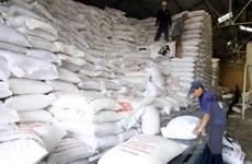 SHB dành 3.000 tỷ đồng cho vay thu mua tạm trữ thóc gạo