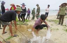 BIDV dành 1.500 tỷ đồng hỗ trợ ngư dân tại các tỉnh bị cá chết