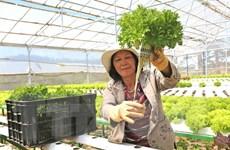 Agribank dành 50.000 tỷ đồng lãi suất ưu đãi phục vụ nông nghiệp sạch
