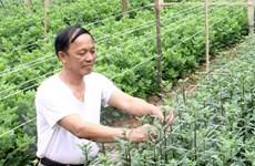 Ưu đãi lãi suất cho nông nghiệp ứng dụng công nghệ cao