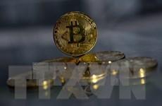 'Cục than nóng' Bitcoin: 'Khi sập sẽ gắn với khủng hoảng toàn cầu?'