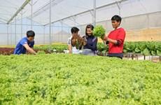 Agribank phục vụ Dự án giám sát và tái cơ cấu ngành nông nghiệp