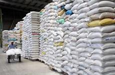 Yêu cầu các ngân hàng cân đối vốn cho vay xuất khẩu gạo
