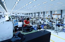 Kinh tế Việt Nam vẫn sẽ bật tăng dù thế giới suy giảm