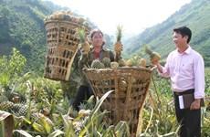 Tiếp thêm động lực giúp đồng bào vùng cao Lào Cai làm giàu