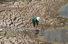 BIDV hỗ trợ 26 tỷ đồng cho người dân bị hạn hán, xâm nhập mặn