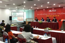 Đại hội cổ đông MSB thông qua kế hoạch chia 10% cổ tức năm 2020