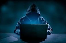 Nhiều biến tướng lợi dụng danh nghĩa CIC để lừa đảo thông tin tín dụng