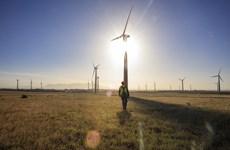 HSBC lần đầu hỗ trợ tín dụng xanh cho ngành điện gió ở Việt Nam