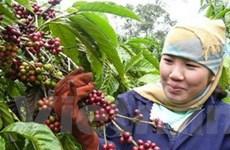 ASEAN hợp tác đào tạo nông nghiệp, khuyến nông