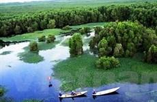 Phát triển hệ sinh thái rừng ngập mặn ĐBSCL
