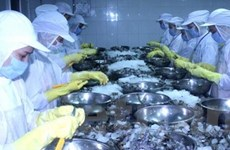 72 tỷ USD xuất khẩu 2009: Mục tiêu khiêm tốn