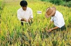 VN sẵn sàng hợp tác nông nghiệp với Cuba
