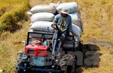 Rót 580 tỷ đồng cho vay khu vực nông thôn