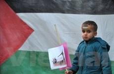 Các phái Palestine nhất trí giải quyết mâu thuẫn