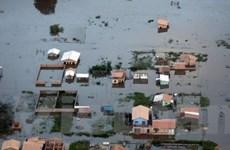 15 người Brazil thiệt mạng do lũ lụt
