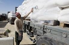Israel cho phép viện trợ nhân đạo vào Dải Gaza