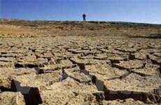 Nạn nhân của biến đổi khí hậu ngày càng tăng
