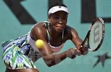 Giải Pháp Mở rộng: Venus Williams thoát hiểm