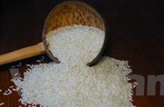 Thị trường gạo thế giới hồi phục vào quý II