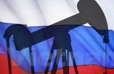 WB: Kinh tế Nga giảm 4,5% trong năm 2009