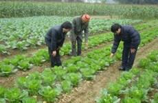 95 triệu USD cải thiện an toàn thực phẩm