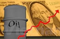 EIU: Kinh tế thế giới năm 2010 khởi sắc hơn