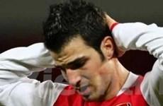 Băng đội trưởng: Và Wenger đã chọn Fabregas