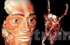 Triển lãm hai thế giới của cơ thể con người