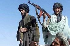 Mỹ và Afghanistan ủng hộ đàm phán với Taliban