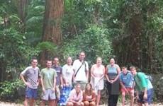 Australia: Du khách bị ảnh hưởng bởi bão Hamish