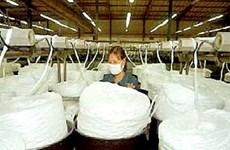 Hải Phòng: Dự án xơ sợi polyester gần 5.500 tỷ đồng