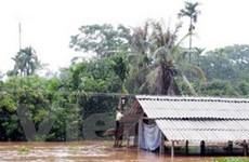Mưa lớn gây thiệt hại tại Ninh Bình, Thái Nguyên