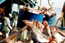 Khai thông trở lại thị trường thủy sản Nga