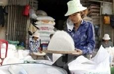 Campuchia bế tắc về thị trường xuất khẩu gạo