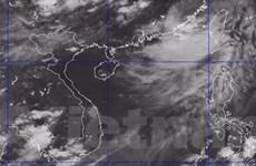 Áp thấp nhiệt đới mạnh lên thành bão Nangka