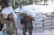 Tiền Giang: Lượng gạo xuất khẩu tăng gấp 3 lần