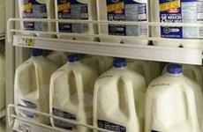 Chính sách trợ giá sữa của Mỹ bị chỉ trích